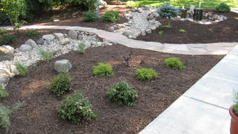 Dry creek bed and raingarden after