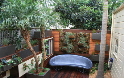 Room of the Day: An Outdoor Space for Living and Playing