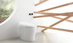 Karing Toilet with Bidet Functionality