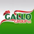 Foto di profilo di Gallo Group Srl