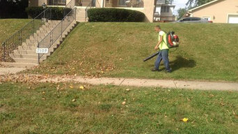 Lawn Care & Tree Trimming