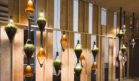 Lichttrends: Die neuen Leuchten sind multitaskingfähig und grün
