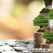 Direct Energy Efficiency Solution Ltd's photo