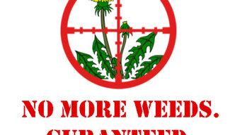 No More Weeds Guarantee