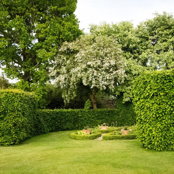 Scotland Garden Scheme