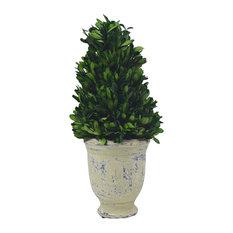 Cone Boxwood Topiary Planter