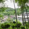 Houzzツアー:里山に抱かれた東青梅の家