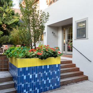 Idee per un piccolo patio o portico minimalista dietro casa con un giardino in vaso, pavimentazioni in cemento e nessuna copertura