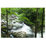 """J. Paul Moore - Little River Smoky Mountains Adhesive Art Print, 24""""x36"""" Landscape - Gone are the days of hanging prints with """"ghetto-tape"""" and """"trashy-tacks"""". These posters are printed on self-adhesive woven fabric. Like yoga pants, they look good with everything and effortlessly move with you. The next time you're tempted to buy a traditional paper poster, just say """"namastick""""."""