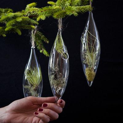 Christmas Ornaments by Flora Grubb Gardens