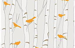 Removable & Reusable Birds & Birch - Neutral and Orange