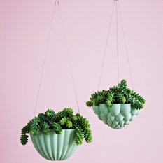 Shop Modern Indoor Pots & Planters on Houzz