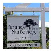 Foto de Young's Nurseries