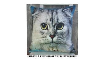 antibacterial cushions