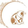 Foto de perfil de Little Bear San Sebastián