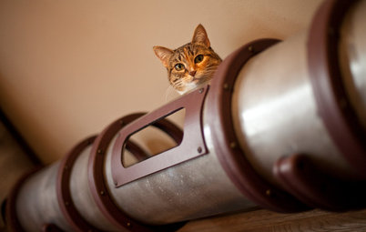 Geek Lab: How to Build a Steampunk Cat Transit System