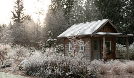 Make the Most of Your Garden During the Quiet Season