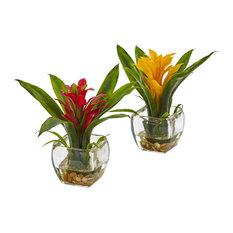 Bromeliad With Vases Arrangement, 2-Piece Set