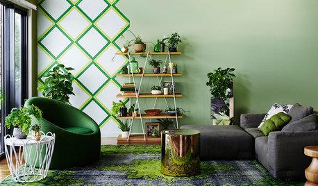 Wohin mit den Zimmerpflanzen? 12 Gestaltungsideen & Arrangements