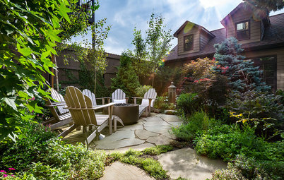 A Lush Backyard for a Plant Collector