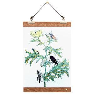 """Beetles"" Botanical Poster With Birchwood Frame, 22x30 cm"