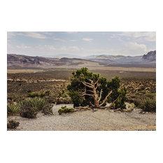 """Desert And Mountains Photograph Art Print, Art Print, 16x11"""""""