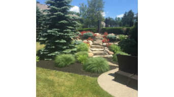 Southtowns Tree & Landscaping