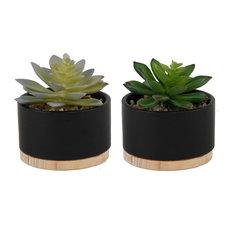 Succulent Mix In Blk Ceramic Wood Base, 2 Piece Set