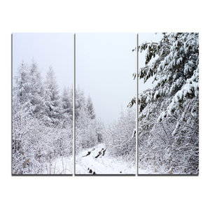 """""""Frosted Forest Trail in Fall"""" Photo Wall Art, 3 Panels, 36""""x28"""""""
