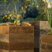 Pots and Planters by Style