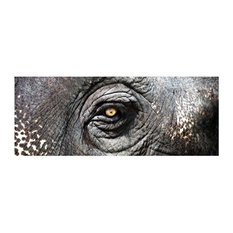 Sterling Industries Exclusive Gianni Rusconi 60x16 Print on Canvas