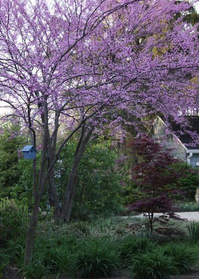 by Arcadia Gardens, LLC
