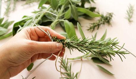 Fai da Te: Essiccare le Erbe Aromatiche