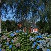 Un jardín espectacular en Asturias con 600 especies de plantas