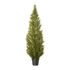 "Arborvitae With Green Pot, 72"""
