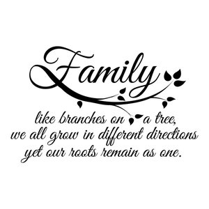 Family Roots Wall Quotes Decal