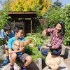 Houzz TV: An Edible Backyard in an Eichler Home