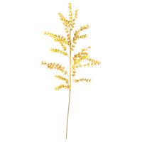 Botanica #978