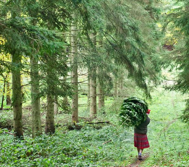 Модернизм Новогодние елки by Pines and Needles