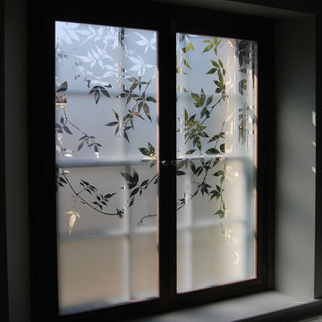 Etched glass for window shutters