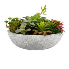 """12"""" Mixed Succulent in Concrete Pot"""
