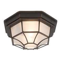 Yosemite One Exterior Light With Oil-Rubbed Bronze Frame Finish 3902LIORB