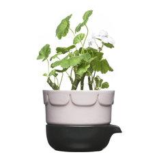 Green Herb Pot, Pink