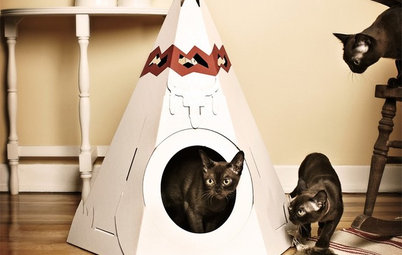 Get the Scoop on High-Design Litter Boxes