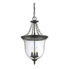 Acclaim Lighting Belle Collection Hanging Lantern 3 Light Outdoor Light Matte Black