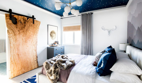 Nods to Nature and 'Star Wars' in 2 Boys' Bedrooms and Bath