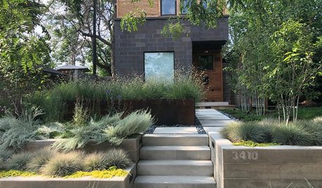 Order Meets Wildness in a Denver Front Yard Makeover