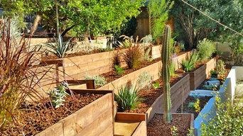 Desert Landscaping--Hillside