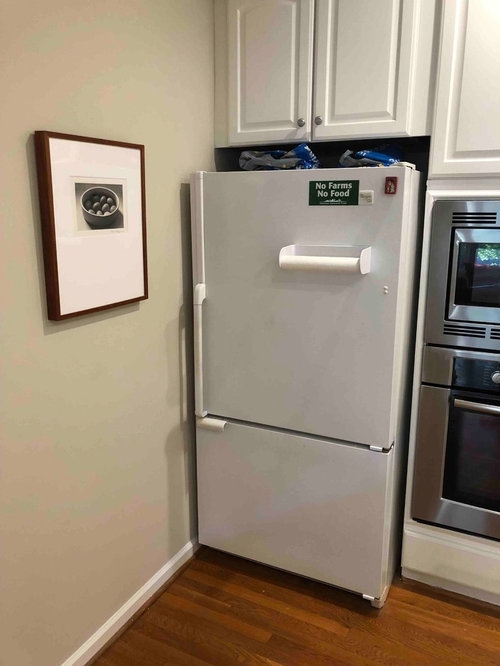What S The Best Refrigerator For This Space