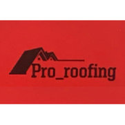 Pro_roofing's photo